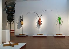 huge insects by Lorenzo Possenti
