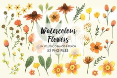 Posted by @newkoko2020 Watercolor Flower in orange set 1  by Marbia Studios on @creativemarket