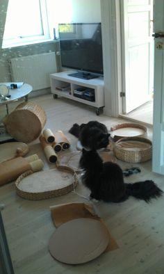 Vi bygger kattetræ
