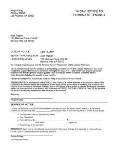 GeneralLedgerSheetVJpg   Landlord Forms