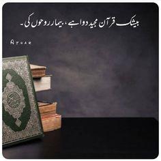 Quran Pak, Islamic Quotes, Words, Horse