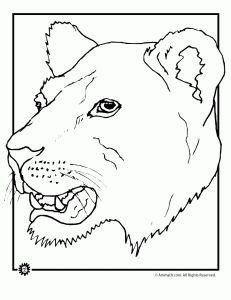Lion Coloring Pages | Animal Jr.