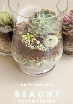 DIY+Beachy+Terrariums