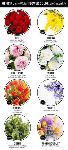 Flower color meanings