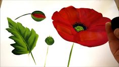 How to Paint a Large Red Poppy -Easy and Fun!