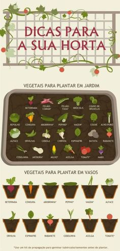 Ultimate Vegetable Gardening Guide in Handy Infographic Form Vegetable Gardening Guide: what veggies to grow for plot vs. patio gardensVegetable Gardening Guide: what veggies to grow for plot vs. Garden Types, Diy Garden, Herb Garden, Garden Plants, Gutter Garden, Garden Site, Potted Plants, Indoor Vegetable Gardening, Organic Gardening Tips