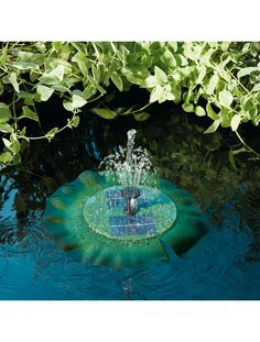 Aerate and accent your garden pond, birdbath, or other backyard water feature with the Smart Solar Floating Solar Lily Fountain . Backyard Water Feature, Ponds Backyard, Garden Ponds, Backyard Plan, Backyard Ideas, Pond Landscaping, Landscaping With Rocks, Solar Pond, Terrarium Reptile