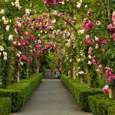 Country-Hochzeit Rosengarten