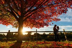 sunset peeking out during fall engagement session| engagement photography by Butler Photography LLC.| Love Fall Weddings? See this Somers, CT Engagement Session - http://emmalinebride.com/real-weddings/love-the-fall-weddings-see-this-somers-ct-engagement-session/