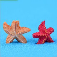 2pcs/set Mini resin small Fishstar Landscape Bonsai Garden Ornament ,Artificial Sea Star tableware DIY Home Decorations