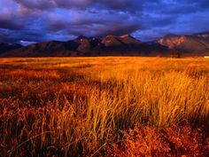 Mission Mountains at Sunset in the Flathead Indian Reservation, Montana, USA