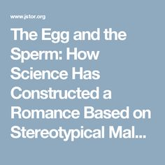 Harbor breeze rc103l quick reference manual page 6 of 8 label the egg and the sperm how science has constructed a romance based on stereotypical male sciox Images
