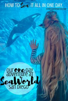 How to SEA it all in one day - SeaWorld San Diego - Family Vacation - 10 Tips & Tricks at SeaWorld - family friendly - family vacation - california - shame - dolphins - photography - kid friendly - seaward - how to do seaworld in one day - best day ever