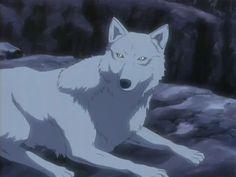 wolf's rain blue and kiba - Google Search