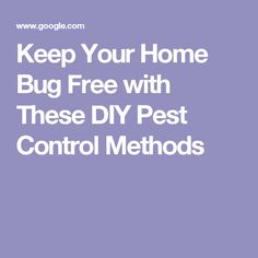 Keep Your Home Bug Free with These DIY Pest Control Methods