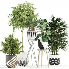 Indoor Flower Pots, Indoor Plants, 3d Models, Quote Prints, Flowers, Design, Clay, Plant Pots, Lawn And Garden