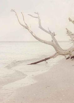 Photo de plage - la mer se déplace en - beige, menthe verte, marron, bord de mer, où la terre mer et ciel rencontrent - 8 x 10 print - décoration murale- sur Etsy, $28.19 CAD