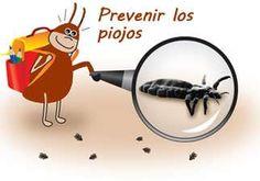 prevenir los piojos
