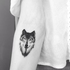 realistic wolf tattoo by Adrian Bascur