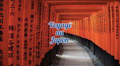 le Japon est un pays des plus accessible, ouvert et enrichissant ! Retrouvez ici budget, conseils et astuces pour un voyage au japon !