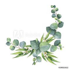Watercolor bouquet with green eucalyptus leaves and branches. - Buy this stock illustration and explore similar illustrations at Adobe Stock Watercolor Journal, Watercolor Cards, Watercolor Illustration, Floral Banners, Floral Logo, Flower Background Wallpaper, Flower Backgrounds, Outside Paint, Pink Wallpaper Iphone