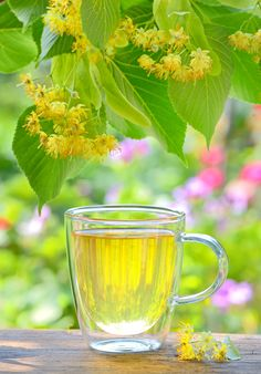 Cup with linden tea and flowers on wooden table by laurentiu iordache