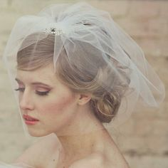 Tulle Birdcage Veil With Blusher & Crystal Comb