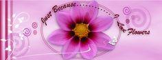 purple flower fb banner