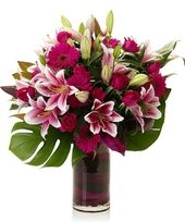 Deliver a moment to remember! You will make an unforgettable impression with this special delivery of hot pink roses, fiery stargazer lilies, and gerbera pastel daisies artfully arranged in a chic designer vase. Same-day delivery around Atlanta and...