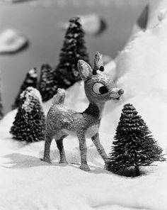 1000+ images about Rudolph the Red Nosed Reindeer on ...