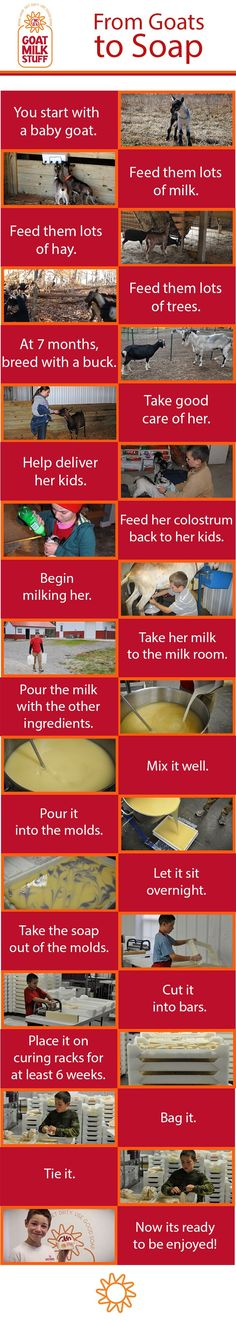 #goatvet likes this easy to read poster - From Goats, to Soap!