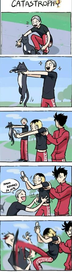 Kenma the cat || Lev you idiot, lol kuroo never gonna let Lev forget this xD