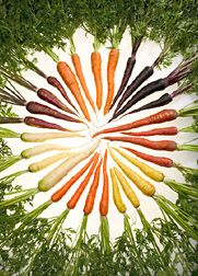 """Carrots with Character"" there is more than just orange carrots out there and each pack an antioxidant and phyto-nutrient punch.  Click the pic for the full article!"