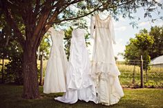 a couple generations of wedding dresses. This is adorable!