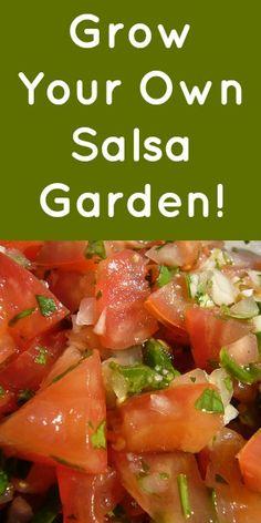 Grow a Salsa Garden in a Jar
