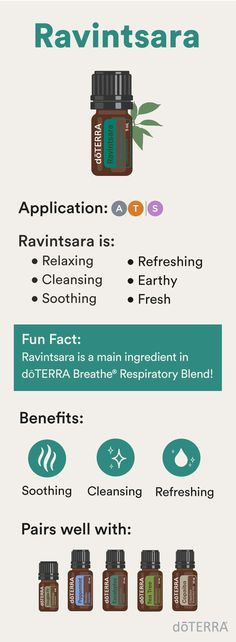 Ravintsara is an effective air freshener. Combine it with essential oils like Roman Chamomile, Copaiba, Eucalyptus, or Rosemary to encourage a refreshing atmosphere. Incorporate it into your favorite doTERRA® skin cleanser for added cleansing benefits.