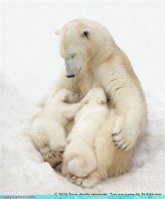 Mothers ...the Sweetest Thing
