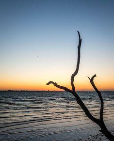 Sunrise on Sanibel Island.  Beautiful but brisk morning walk!