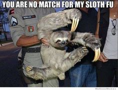 "Ninja Sloth: Come at me bro! - Funny sloth looks like ninja doing ""Come at me bro"" pose. This reminds me of Abe! Funny Shit, Funny Cute, The Funny, Funny Memes, Sloth Memes, Sloth Humor, Jokes, Funny Pics, That's Hilarious"