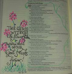 Isaiah 40:1-10, 12/6/16