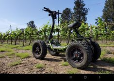 Motorcycle Types, Atv, Electric, Bike, Adventure, Toys, Bicycle, Activity Toys, Mtb Bike