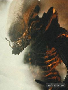 "This is a tumble-log devoted to the ""Alien"" and ""Predator"" film franchises, especially designs by HR Giger (and direction from directors Ridley Scott, James Cameron, et al). Saga Alien, Alien Film, Alien Art, Aliens 1986, Les Aliens, Aliens Movie, Alien Vs Predator, Conquest Of Paradise, Sci Fi Movies"