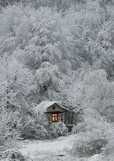 Cabin Surrounded By Winter
