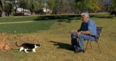 Jay Leno Gives Us Hilarious Proof That Cats Are Smarter Than Dogs!
