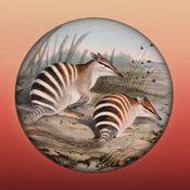 Field Guide to Western Australian Fauna by Western Australian Museum. Free