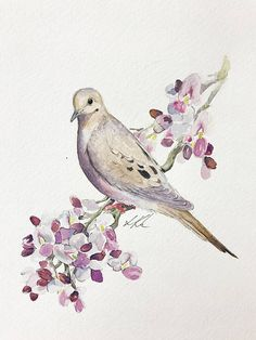11x14 Original Watercolor Of Mourning Dove Painting Ironwood Flower Blossoms Floral Flowers Bird Ar
