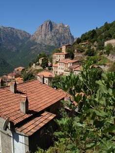Ota (2A. Corse-du-Sud) Corsica, Architecture, French Country, Paradise, Cabin, Messages, Adventure, House Styles, Travel