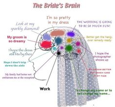 Bride´s brain, that´s really great :D