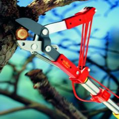 Have tree trimming to do?  You'll love this WOLF-Garten Tree Lopper - RCM. $41.99