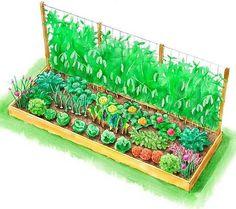 Winter Season Raised Garden Bed Plan | Raised Garden Bed Plans For A Year-Round Vegetable Garden